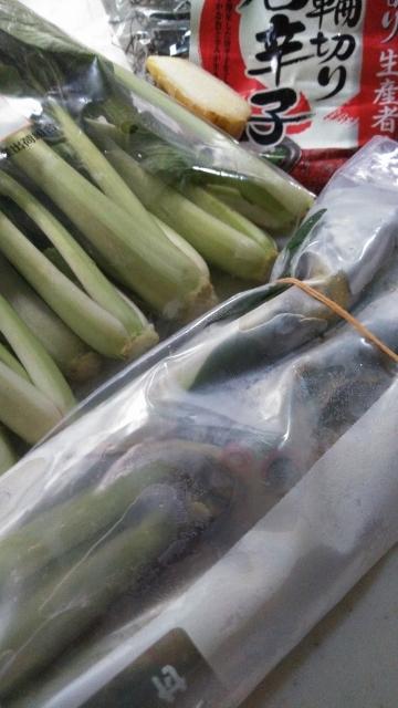 ・・・緑野菜で (360x640)