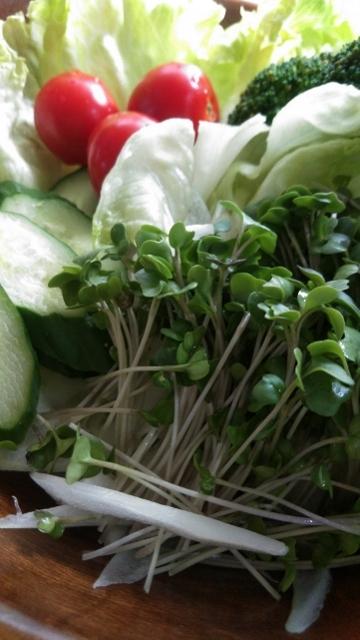 フレッシュな野菜と (360x640)