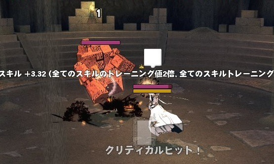 mabinogi_2018_12_26_007.jpg