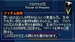 mabinogi_2019_07_11_015.jpg