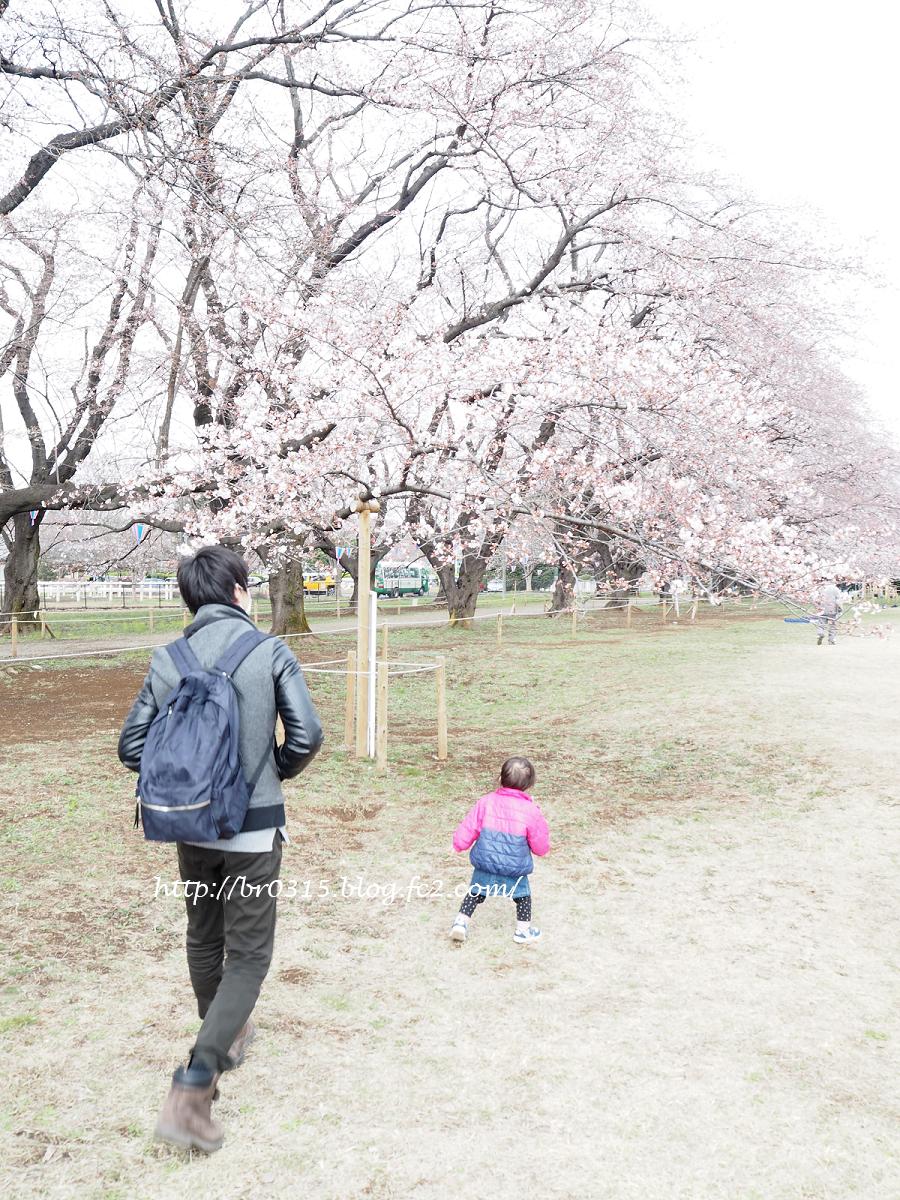 ひとりっこ幼児持ちパパママバッグ