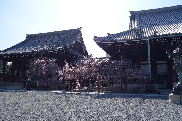 201904kyosub030218.jpg