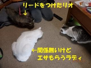 blog190502_1.jpg