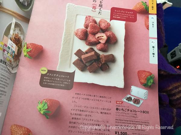 201905Chocolate_berry-1.jpg