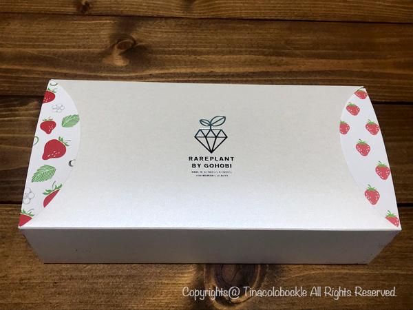 201905Chocolate_berry-2.jpg