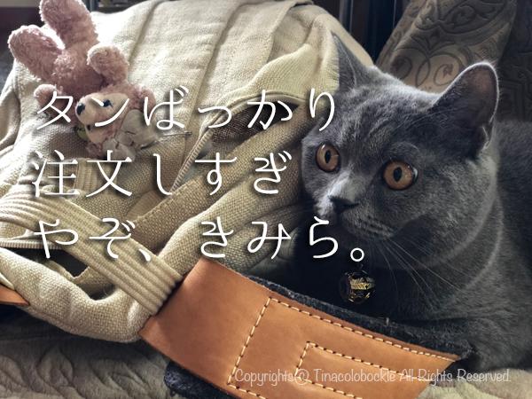 201909kurachan_Kashiwa-8.jpg