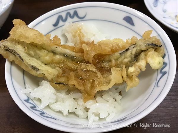 201910Yakatabune_Amiharyu-15.jpg