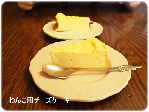 わんこ用チーズケーキ