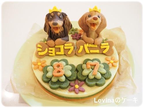 ロビナのケーキ