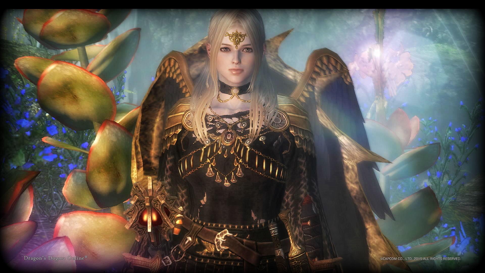 Dragons Dogma Online__705AA