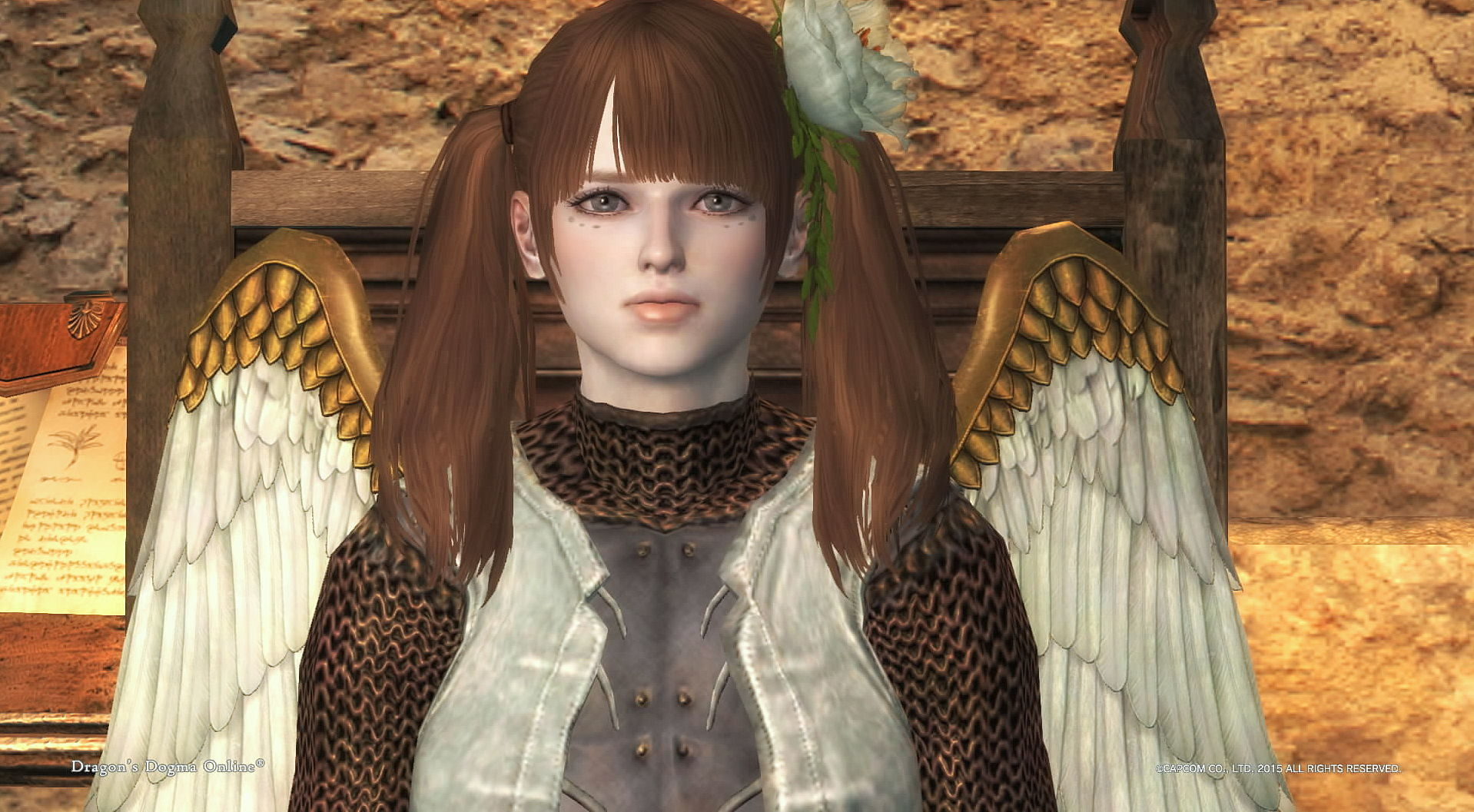 Dragons Dogma Online__1123A