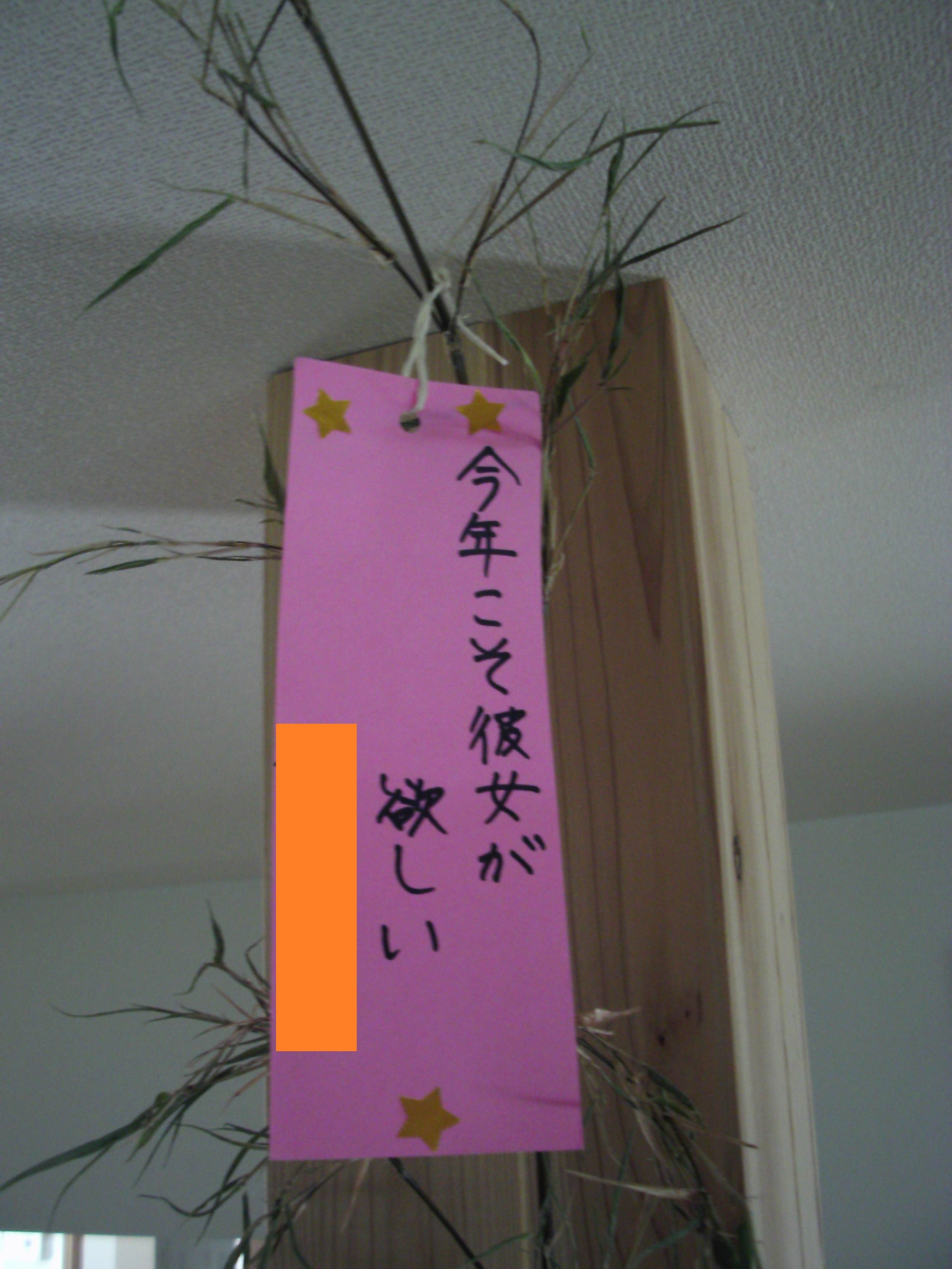 07_08 (85)