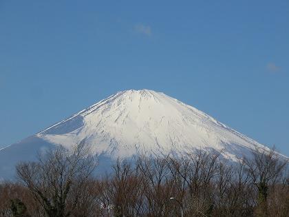 東方からみた富士山