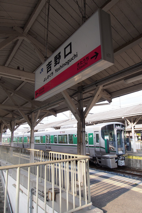 20190421_yoshinoguchi-01.jpg