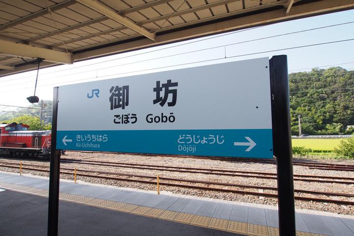 20190825_gobo-01.jpg