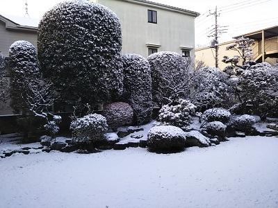 雪2019