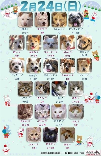 ALMA ティアハイム2019年2月24日 (修正) 参加犬猫一覧