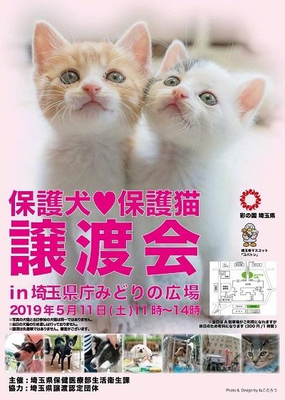 埼玉譲渡会1