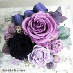Fairy0362611014IMG3875.jpg