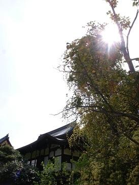 kaneiji.jpg