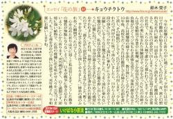 201909kyochikuto.jpg