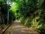 本殿への道