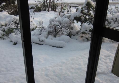 平成31年 3月12日 玄関から見る雪