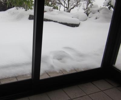 平成31年3月31日の朝 玄関から雪景色
