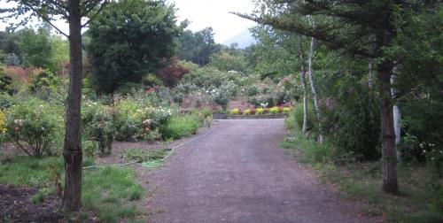 サラダファーム ガーデンパーク