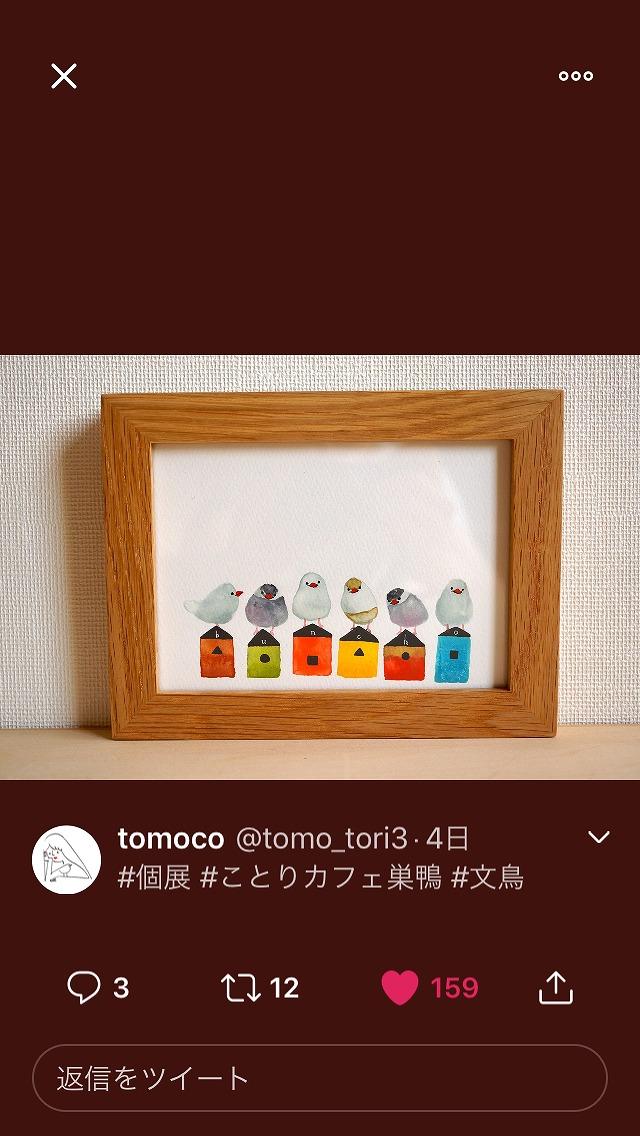 tomokosannnogennga (1)