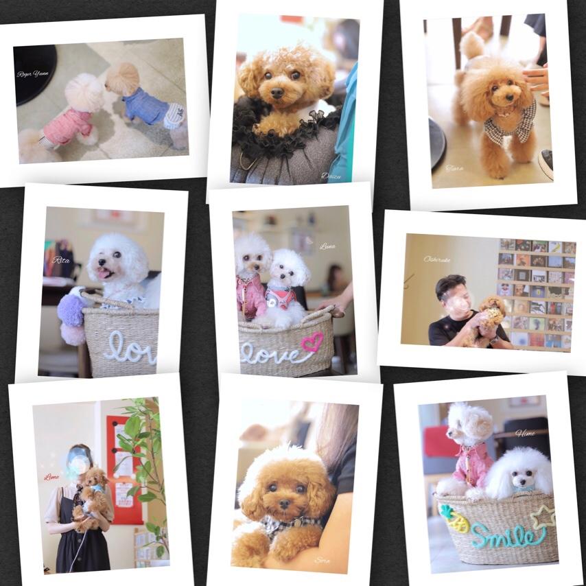 fc2blog_20190906134606cc5.jpg