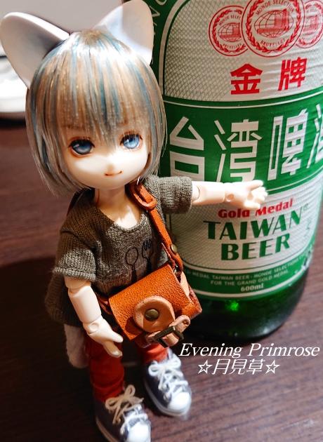 台湾ねこ京介01