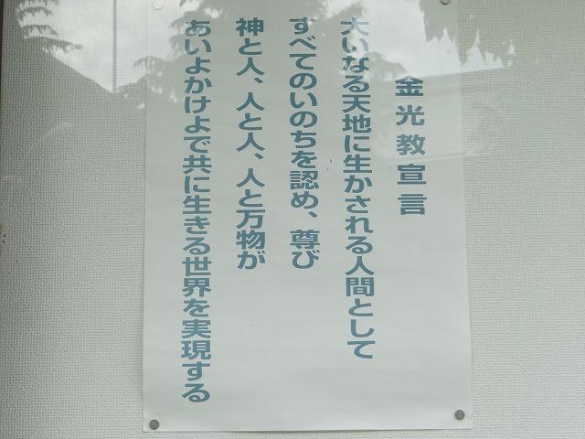DSC02488.jpg