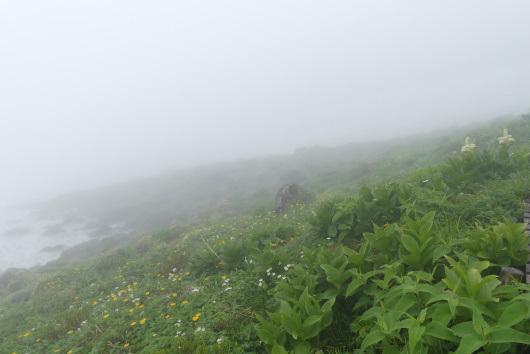 2019.07.薬師岳・立山