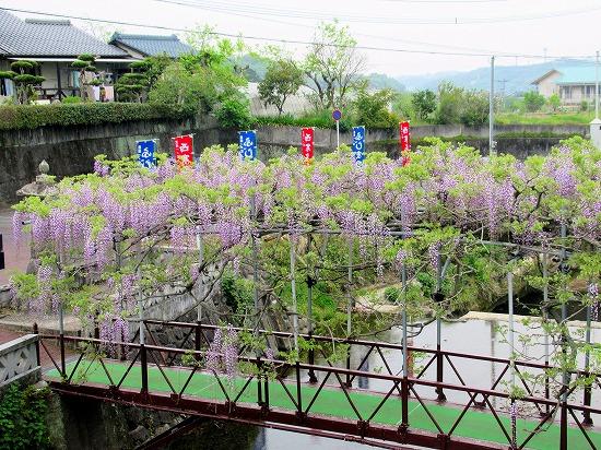 西寒田神社のふじ祭り
