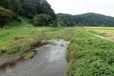 川崎城跡公園