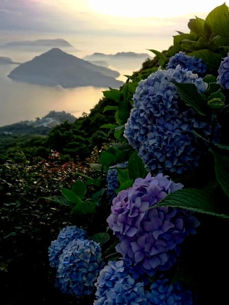 紫雲出山16