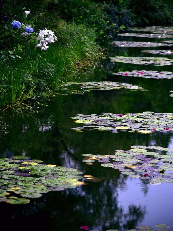 水の庭04