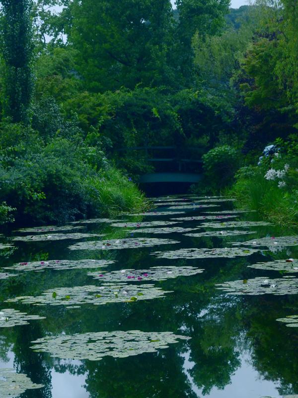 水の庭13