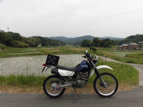 CIMG46461aa.jpg