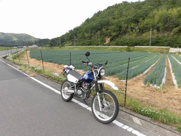 CIMG48611aa.jpg