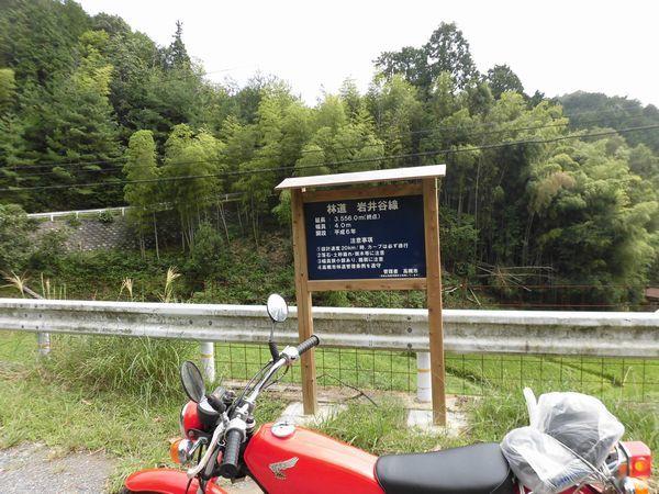 CIMG67361aa.jpg