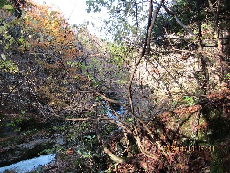 真瀬川の紅葉終盤2