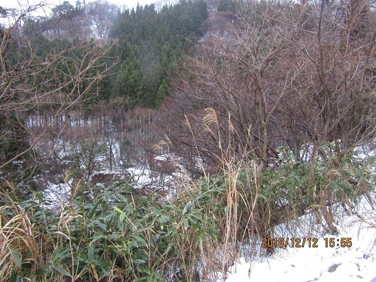 真瀬川冬1
