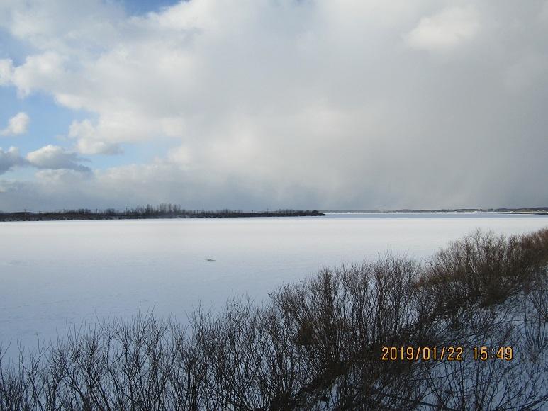 八郎潟残存湖1