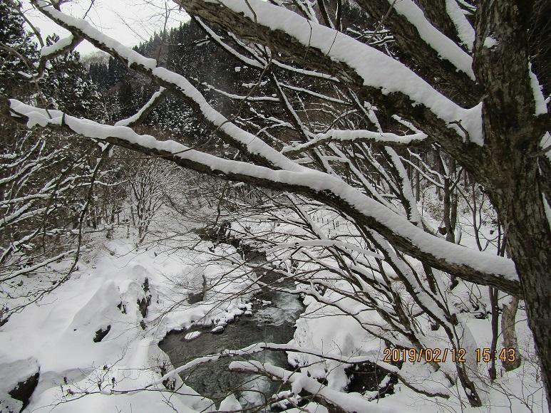今年の真瀬川3
