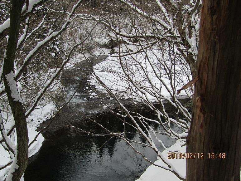今年の真瀬川5