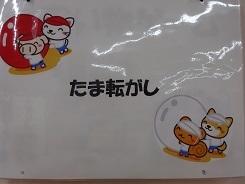 DSC08600.jpg
