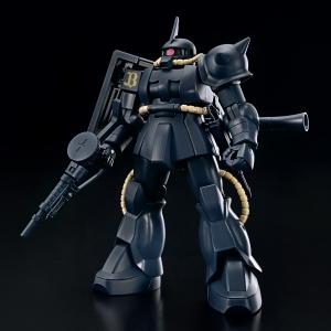 HG MS-06S ザクII(バファローズVer.) (2)