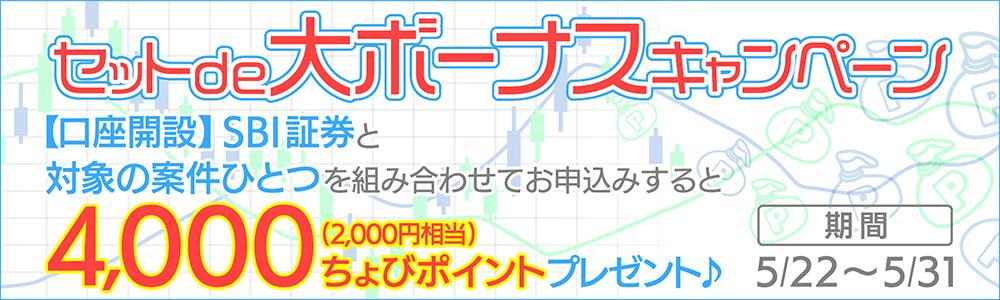 bnr_1000_300 (2)